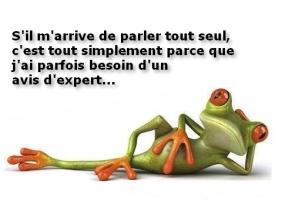 grenouille-bien-sc3bbr-que-je-parle-parfois-tout-seul-480x348