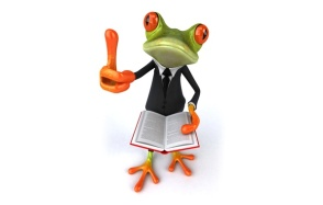 frog-3d-funny-book-suit